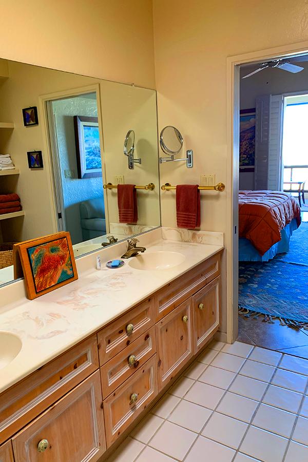 Master Bath Sinks, Native Desert Sun Golf House, Rams Hill