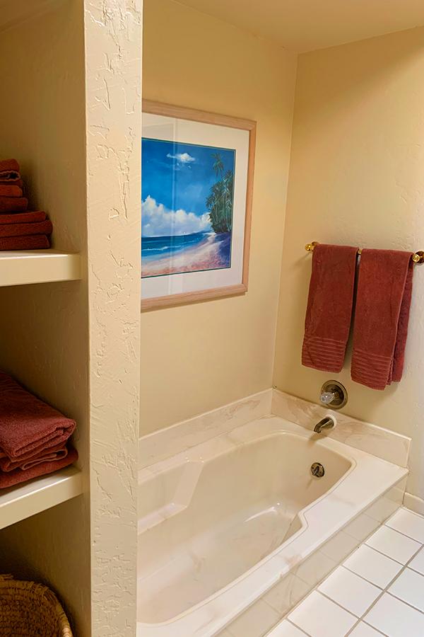 Master Bath Tub Area, Native Desert Sun Golf House, Rams Hill