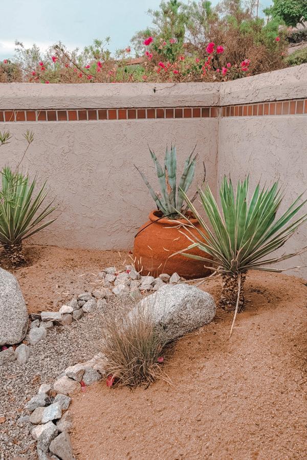 the Native Desert Sun Rams Hill golf house outside garden